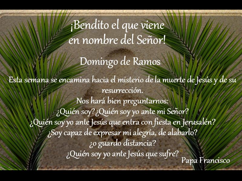 Domingo de Ramos - Colegio San José Tandil